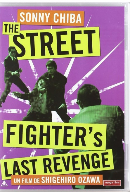 THE STREET FIGHTERS LAST REVENGE