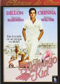 The Flamingo Kid [DVD]